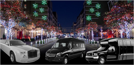 Christmas Light Tours Limo Service San Francisco