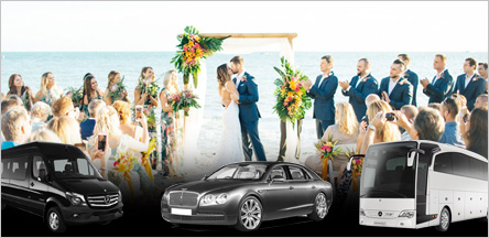 San Francisco Wedding Limousine Service